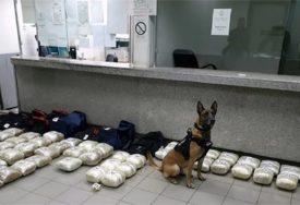 VELIKA ZAPLJENA Policijski pas nanjušio kokain vrijedan više od DVA MILIONA EVRA