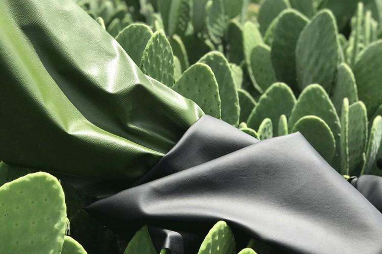 Koža od kaktusa, inovacija u industriji biorazgradivog tekstila